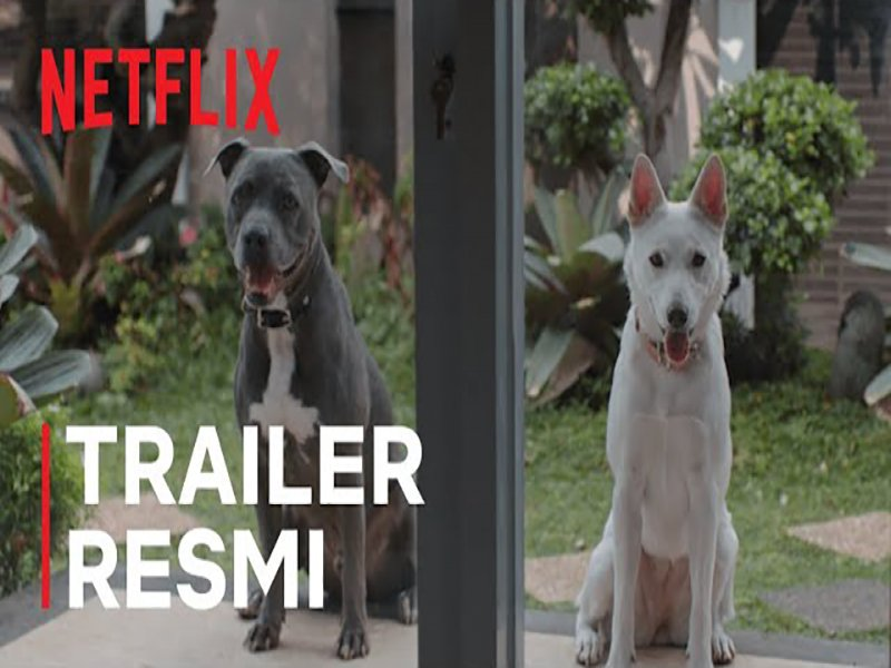 Foto Film June & Kopi sudah bisa Ditonton di Netflix sejak 28 Januari 2021, Ini Sinopsis dan Trailernya